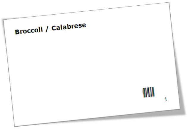 Sample card with bar codes to simplify data capture (the bar code provides the item number in machine-readable form)