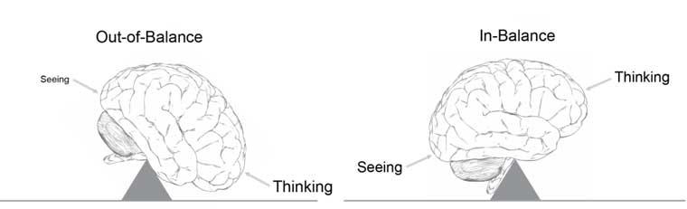 Human sensation and perception