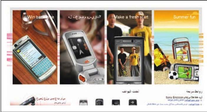 Sony Ericsson Egypt: Promoting Variety and Fun (in Seidenspinner and Theuner, 2007). A note on the use of illustrations in this chapter: In many cases these figures are reproduced from the original ar