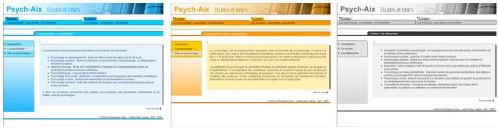 Samples of Diverse Color Use on Websites (in Bonnardel at al., 2011)