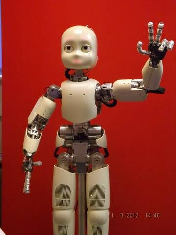 The iCub (2013) humanoid open course platform, developed as part of the Robotcub project (2013).
