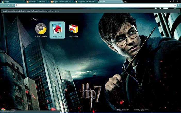 Aesthetics as an extension of the Self: Harry Potter skin for the Google Chrome browser