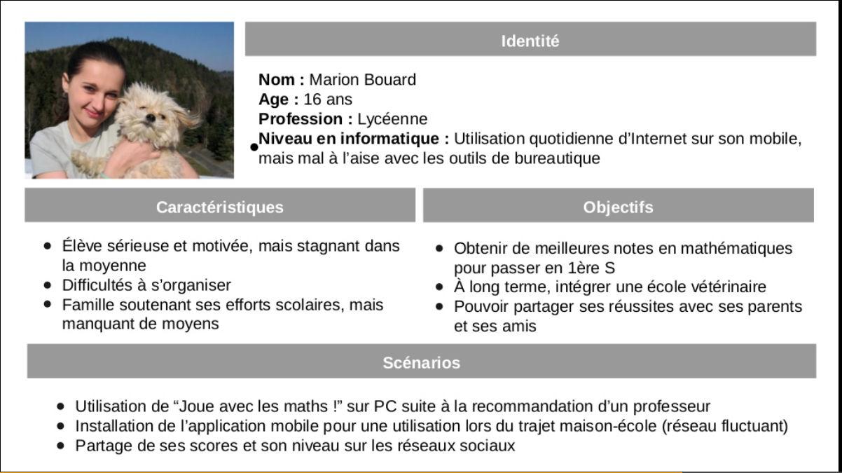User Personas For Mobile Design And Development Interaction Design