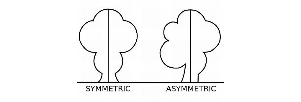 symmetry vs asymmetry recalling basic design principles