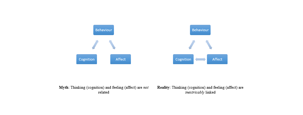 How Emotions Impact Cognition